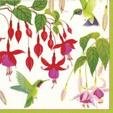 Caspari Hummingbirds Paper Dinner Napkins, Pack of 20