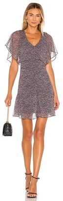 Parker Tacoma Dress