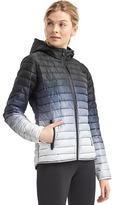 Gap PrimaLoft® ombre puffer jacket