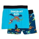 Hatley Boy's Boxer Shorts - Dragons