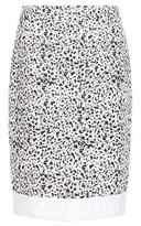 Carolina Herrera Speckled tweed skirt