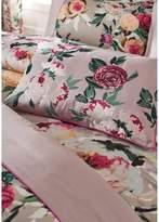 Dorma Henrietta Cushion