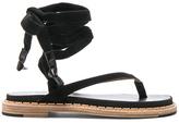 Flamingos Suede Zinnia Sandals in Black.