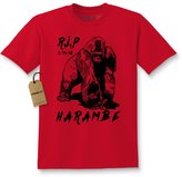 Expression Tees Kids RIP Harambe (Black Print) T-Shirt