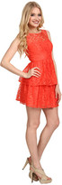 Max & Cleo Rose Cut Out Lace Dress