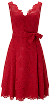 Phase Eight Milly Lace Dress, Scarlet