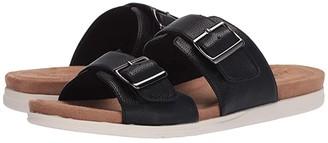 Aerosoles Hamden (Black) Women's Shoes