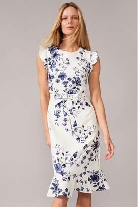 Phase Eight Womens Cream Tori Printed Dress - Cream