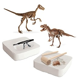 Fao Schwarz Discovery Mindblown Toy Dinosaur 3D Fossil Skeleton Excavation Kit - Ages 6+
