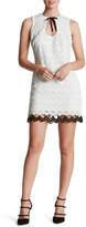 Dress the Population &Mara& Crochet Sheath Dress