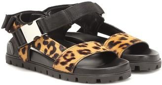 Prada Leopard-print calf-hair sandals