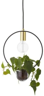 Bloomingville - Gold and Glass Living Pendant Light
