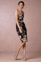 BHLDN Lorene Dress