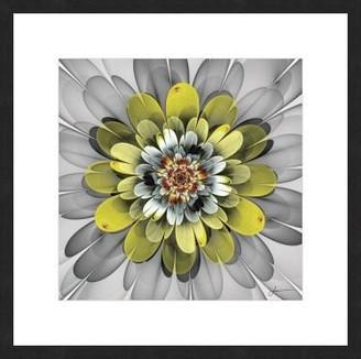 La Grolla Fractal Blooms Iv Framed Print