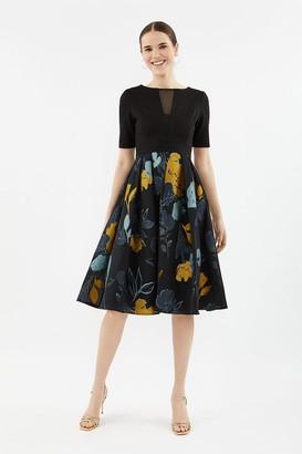 Coast Solid Bodice Clipped Jacquard Skirt Dress