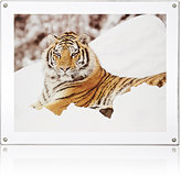 "Canetti Design Group Acrylic 8"" x 10"" Picture Frame"