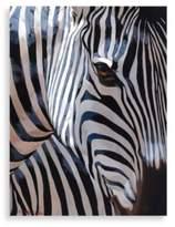 Bed Bath & Beyond Zebra Stripe Wall Art