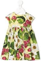 Dolce & Gabbana floral print pleated dress