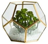 Torre & Tagus Oro Sphere Terrarium