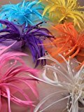 Inca 4412 Bright Large looped net & feather fascinator on forked clip & brooch pin Pink Yellow Orange Purple Cream Turquoise (Purple)