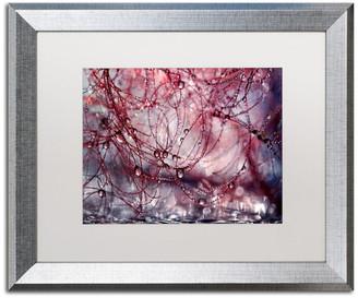 "Chaos Trademark Fine Art Beata Czyzowska Young 'Beautiful Chaos' Art, Silver Frame, 16""x20"", Wh"