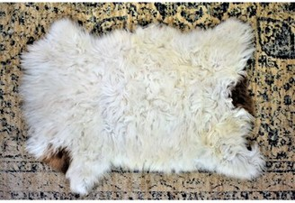 "Millwood Pines Burgan Animal Print Handmade 1'8"" x 2'6"" Sheepskin Cream Indoor / Outdoor Area Rug Millwood Pines"