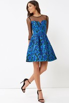 Little Mistress Jacquard Fit and Flare Mini Dress