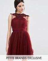 Little Mistress Petite Floral Lace Applique Mini Skater Dress With Mesh Detail