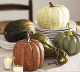 Decorative Pumpkins & Gourds, Set of 5