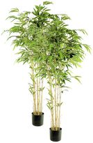 Rogue Artificial Bamboo Nitida Tree (Set of 2)
