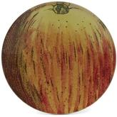 John Derian Apple No. 124 Small Round Plate