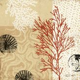 Coral Impressions II Outdoor Print