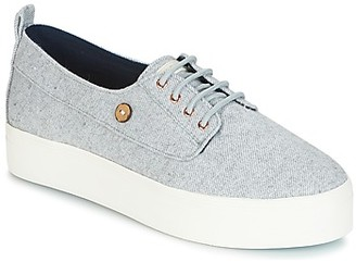 Faguo FIGLONE01 women's Shoes (Trainers) in Grey