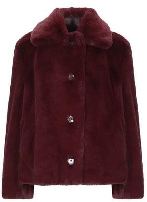 Burberry Teddy coat