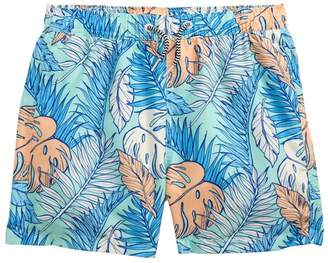 Trunks BOARDIES Palmtopia Swim Toddler Boys, Little Boys & Big Boys)