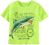 Osh Kosh Shark Info-Graphics Tee