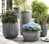 Pottery Barn Concrete Fluted Planters
