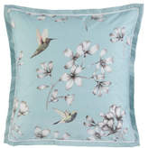 Harlequin Amazilia European Pillowcase (Each)