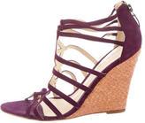Alexandre Birman Suede Wedge Sandals