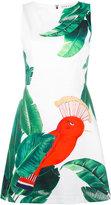 Alice + Olivia Alice+Olivia - bird print day dress - women - Cotton/Polyester/Spandex/Elastane - 4