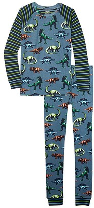 Hatley Painted Dinos Raglan PJ Set (Toddler/Little Kids/Big Kids) (Blue) Boy's Pajama Sets