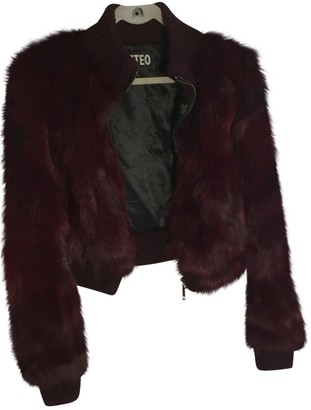 Meteo Burgundy Mink Jacket for Women