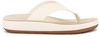 Ancient Greek Sandals Charys Sandal