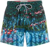 Ted Baker Men's Flamingo Print Swim Shorts