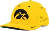 Nike Iowa Hawkeyes Sideline Cap