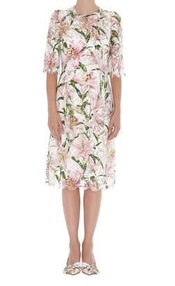 Dolce & Gabbana Lilium Print Lace Dress