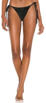 Devon Windsor Cara Bikini Bottom