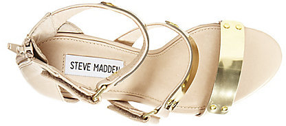 Steve Madden Areaa