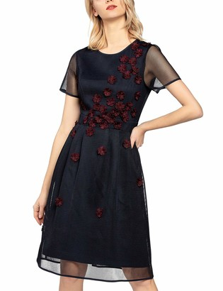 APART Fashion Women's Mesh Dress with Flower Embroidery Party