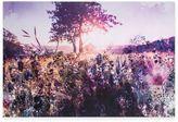 Graham & Brown Layered Landscape Canvas Wall Art